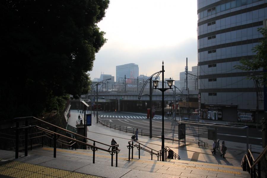 不忍池の蓮-Japan Nomad (6)