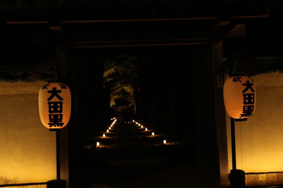 大田黒公園-Japan Nomad (2)