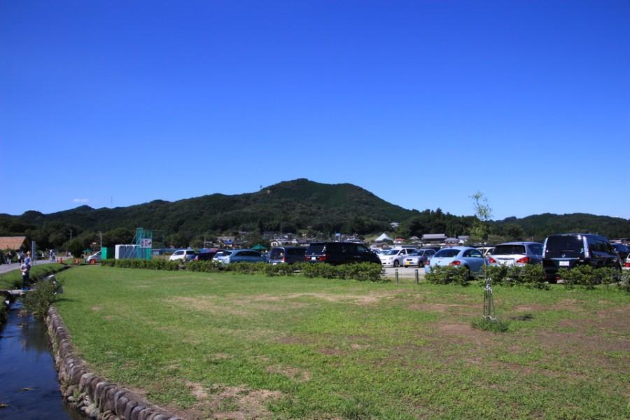巾着田-Japan Nomad (8)