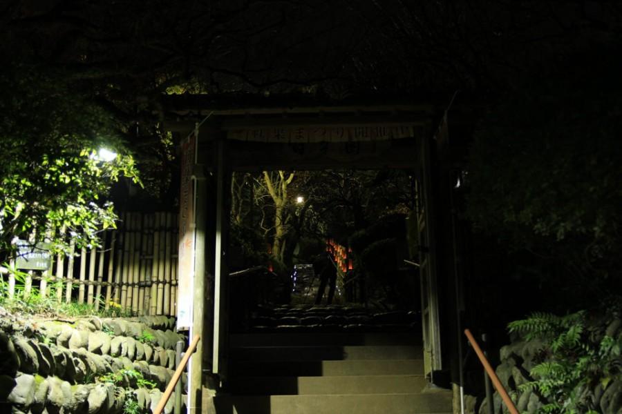百草園-Japan Nomad (5)
