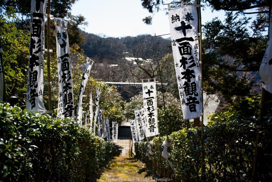鎌倉梅散策-Japan Nomad (33)