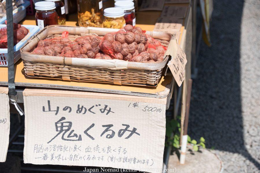 自転車日本一周32日目-Japan Nomad (17)