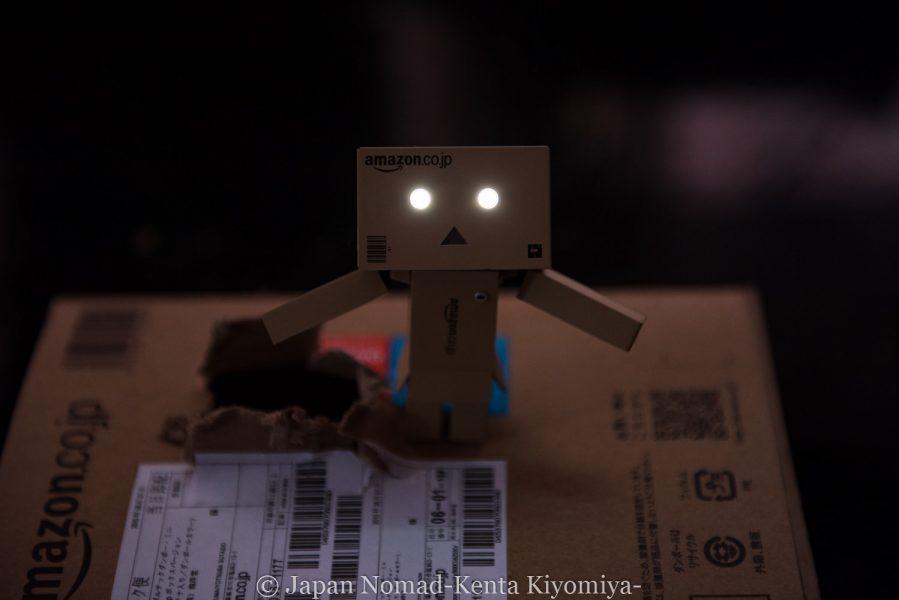 自転車日本一周(ダンボー登場)-Japan Nomad (12)