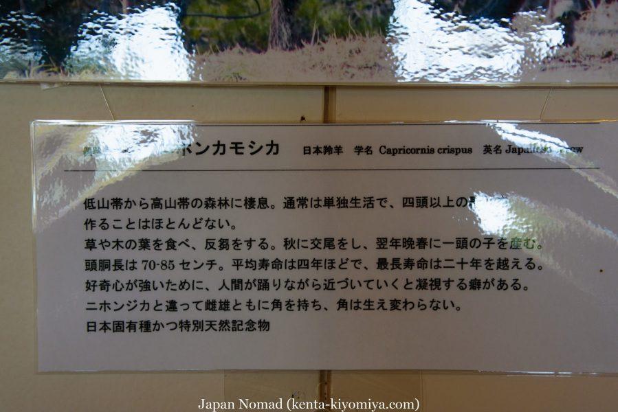 自転車日本一周46日目(龍泉洞、北山崎)-Japan Nomad (66)