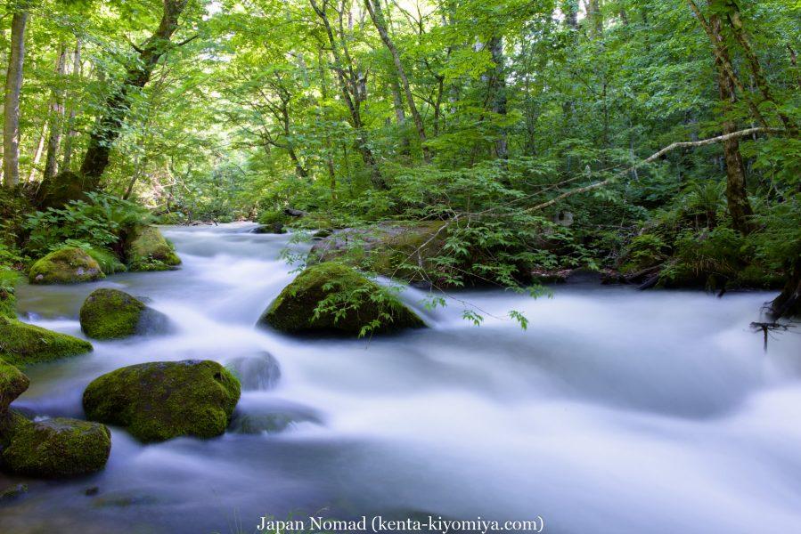 【旅50日目】新緑の奥入瀬渓流