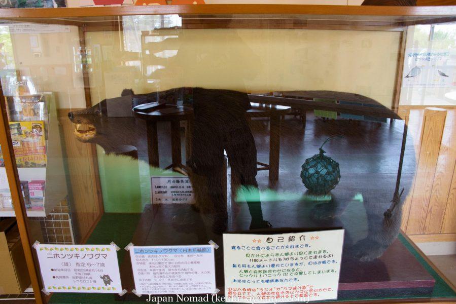 自転車日本一周46日目(龍泉洞、北山崎)-Japan Nomad (65)