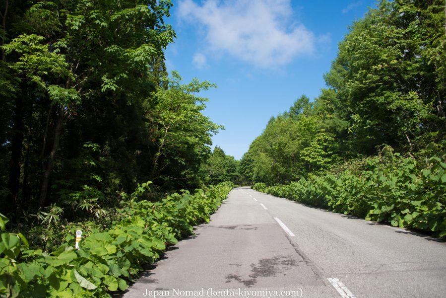 自転車日本一周50日目(十和田湖、奥入瀬渓流)-Japan Nomad (14)