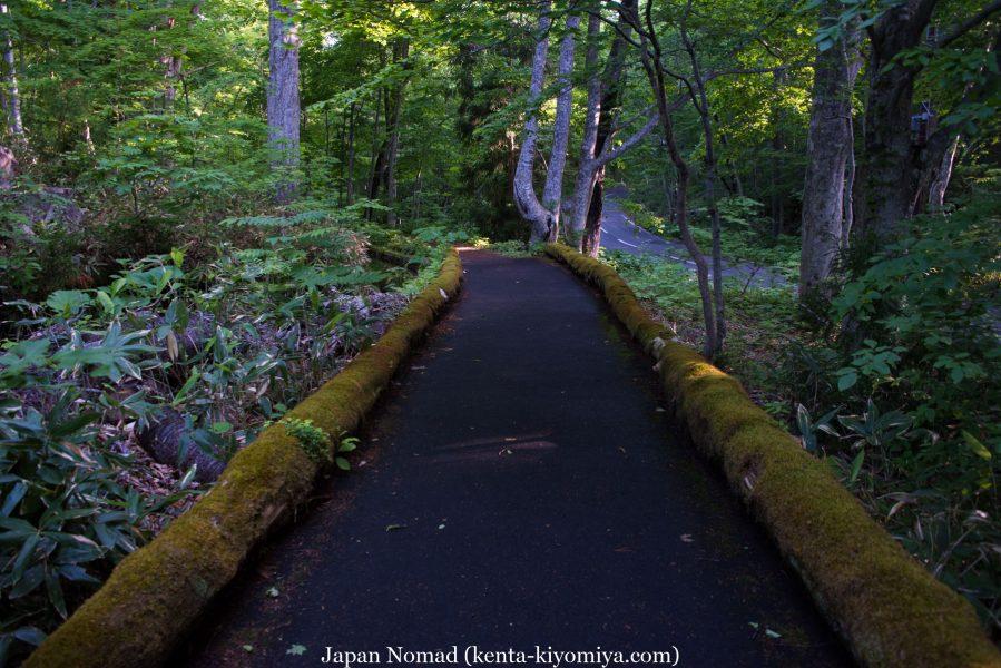 自転車日本一周51日目(蔦沼、蔦七沼)-Japan Nomad (10)