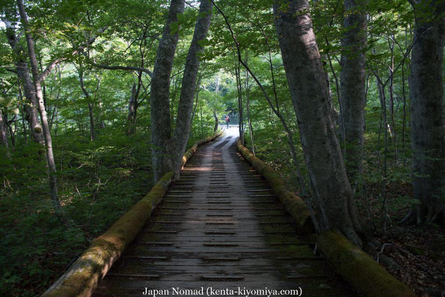 自転車日本一周51日目(蔦沼、蔦七沼)-Japan Nomad (12)
