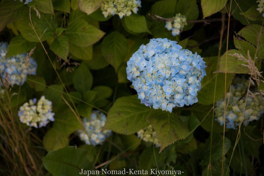 自転車日本一周69日目(Mr. Bicycle)-Japan Nomad (31)