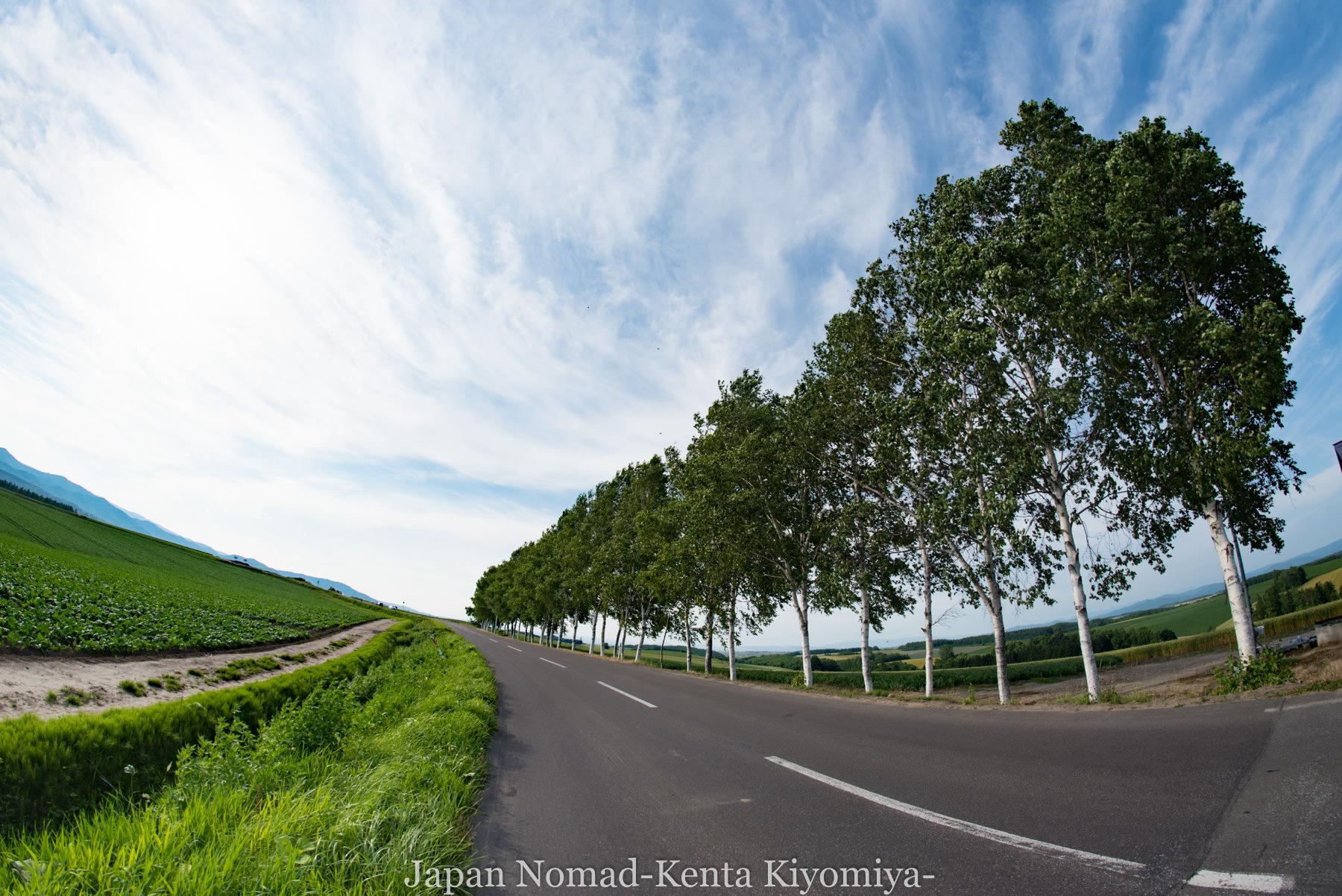 自転車日本一周73日目(美瑛)-Japan Nomad (37)