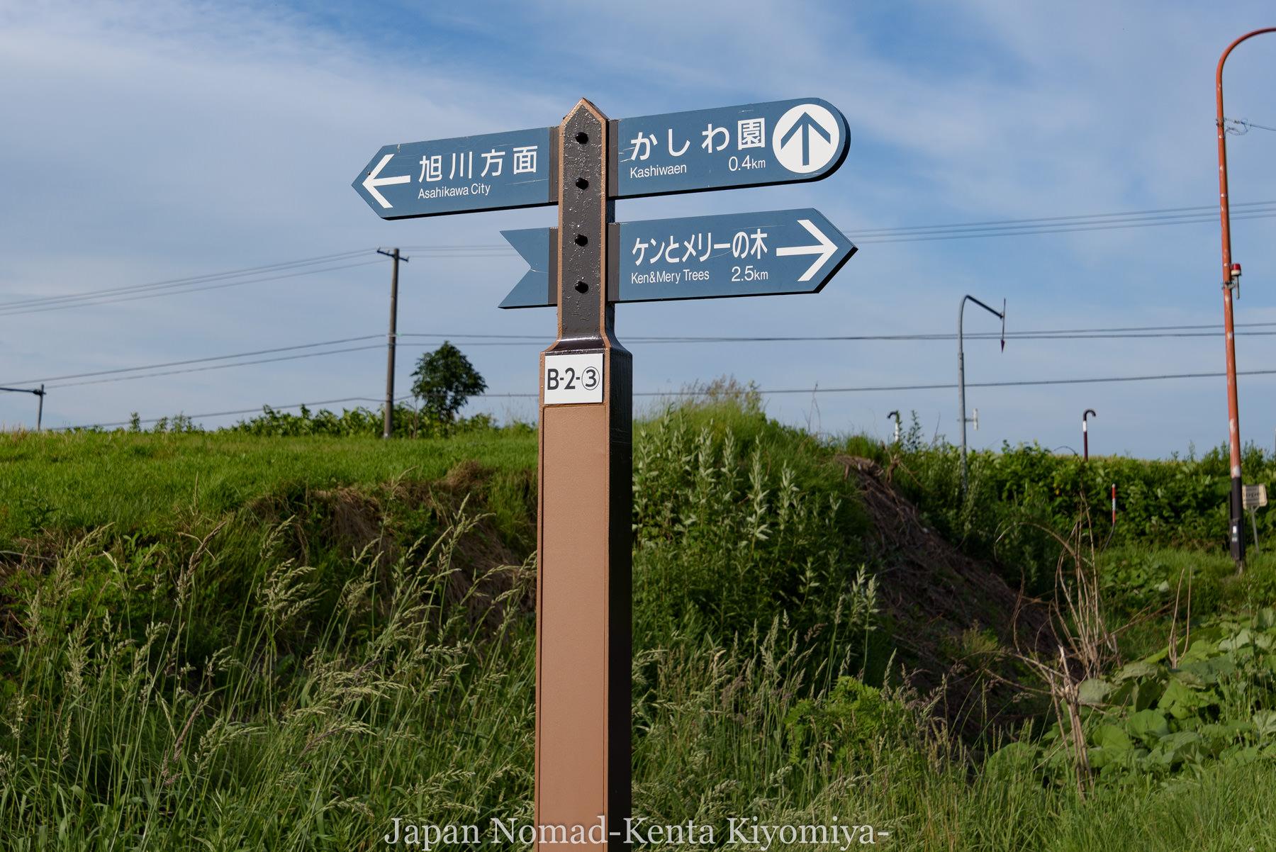 自転車日本一周73日目(美瑛)-Japan Nomad (38)