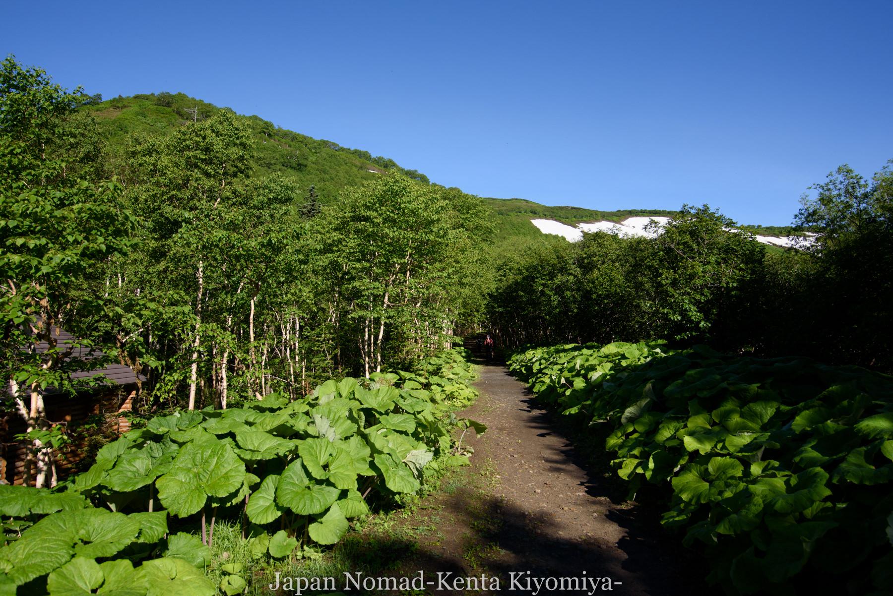 自転車日本一周77日目(大雪山縦走)-Japan Nomad (6)