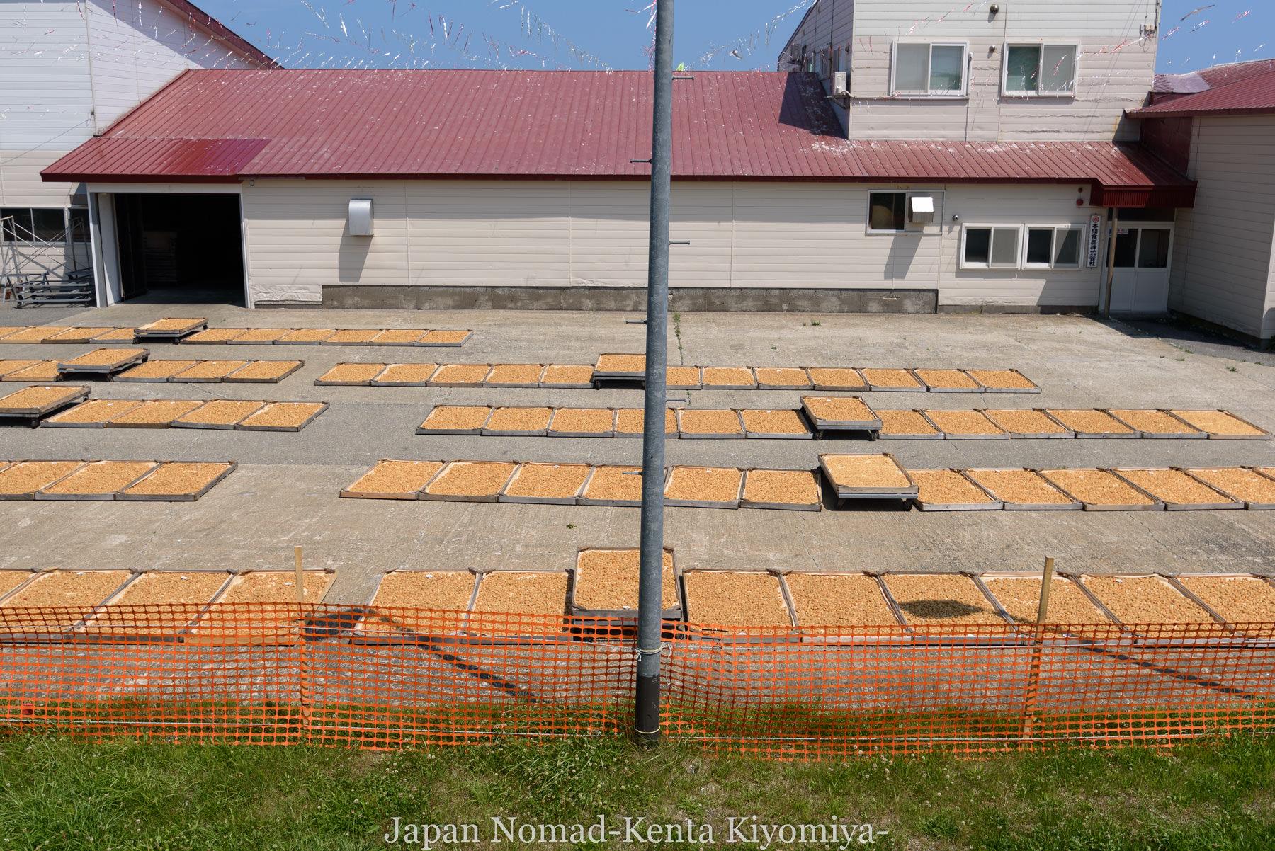 自転車日本一周89日目(宗谷岬、クッチャロ湖)-Japan Nomad (20)