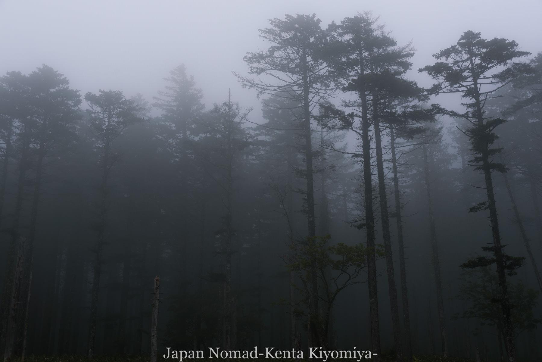 自転車日本一周96日目(美幌峠)-Japan Nomad (13)