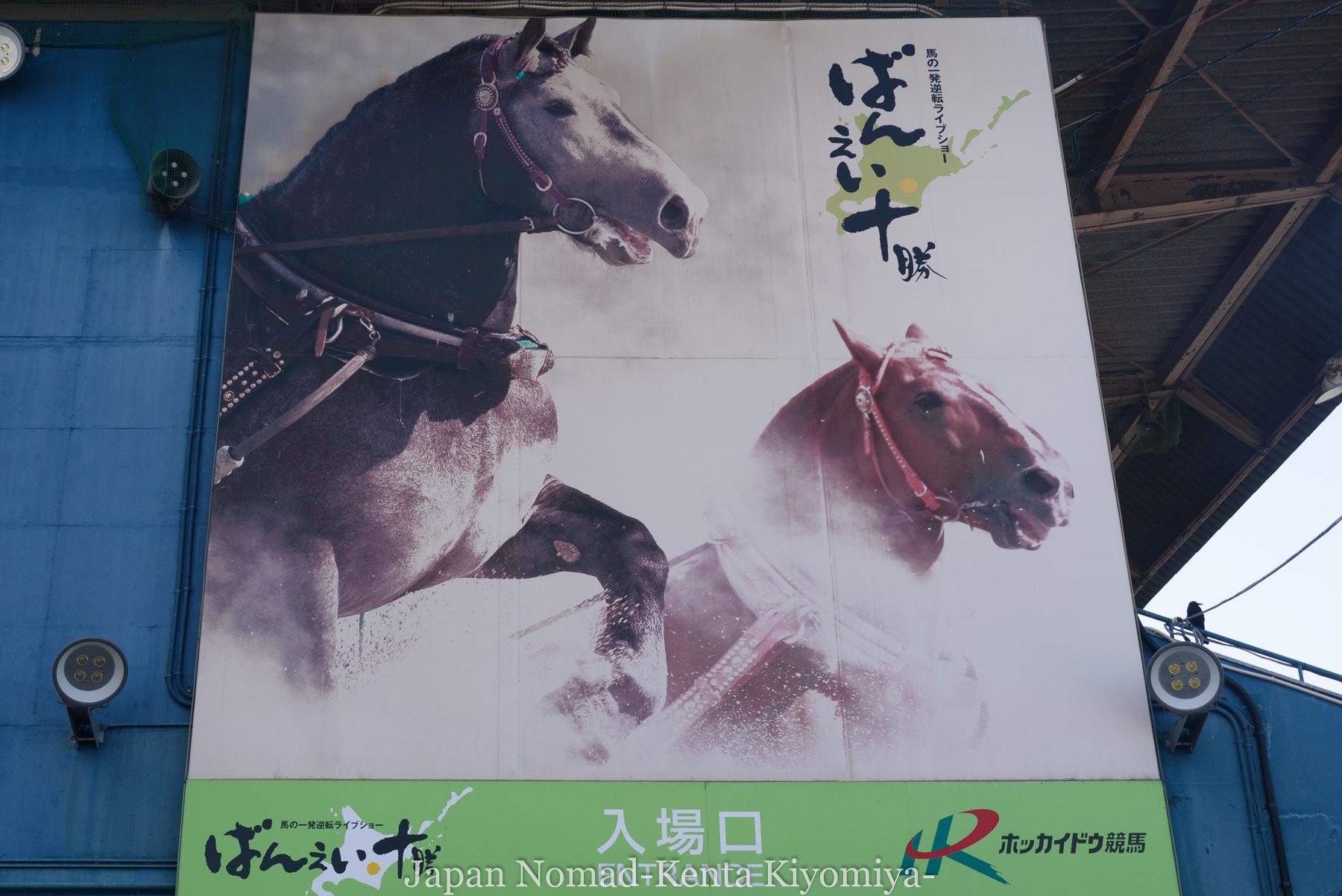 自転車日本一周102日目(帯広ばんえい十勝競馬) (12)