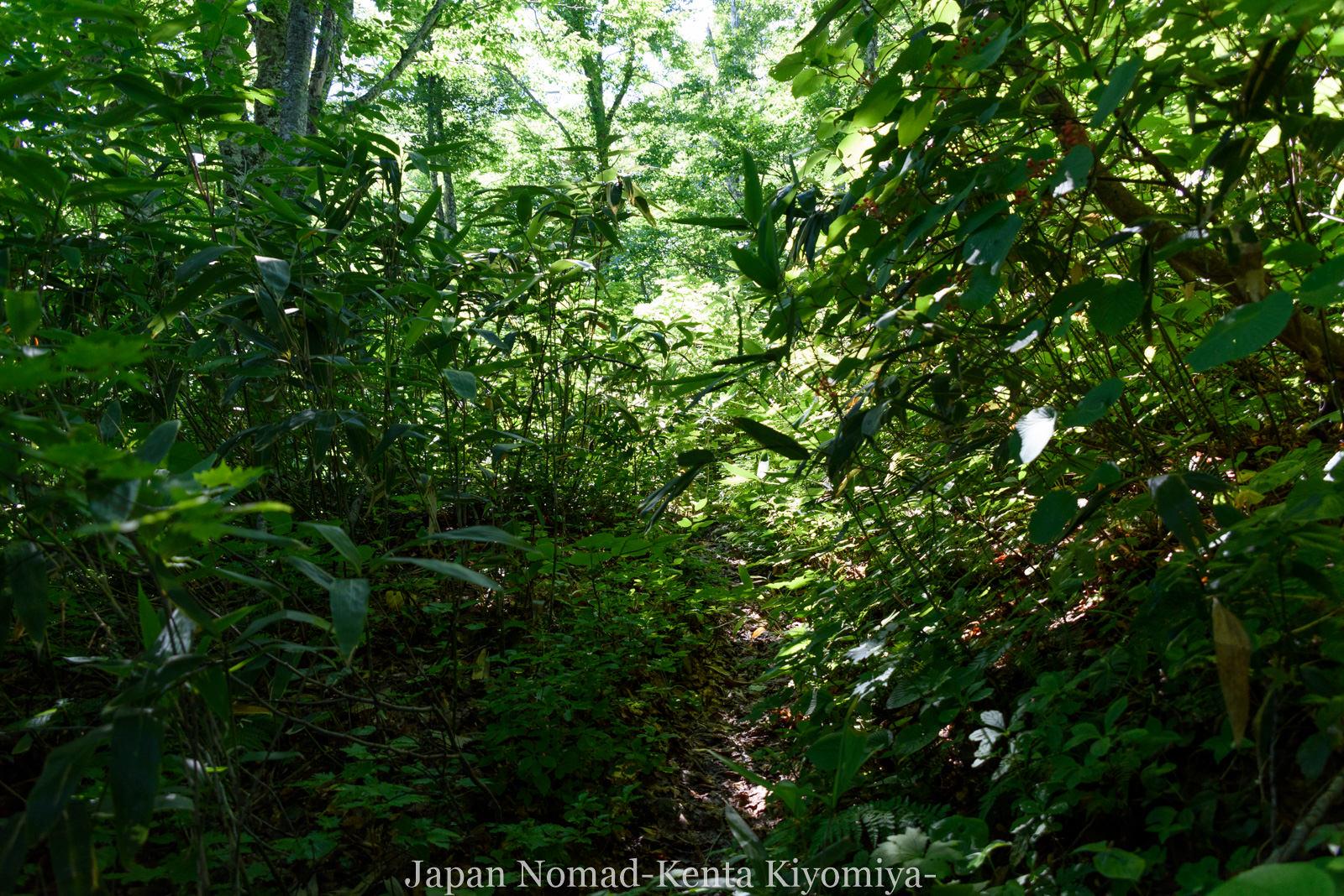 自転車日本一周123日目(岩木山)-Japan Nomad (53)