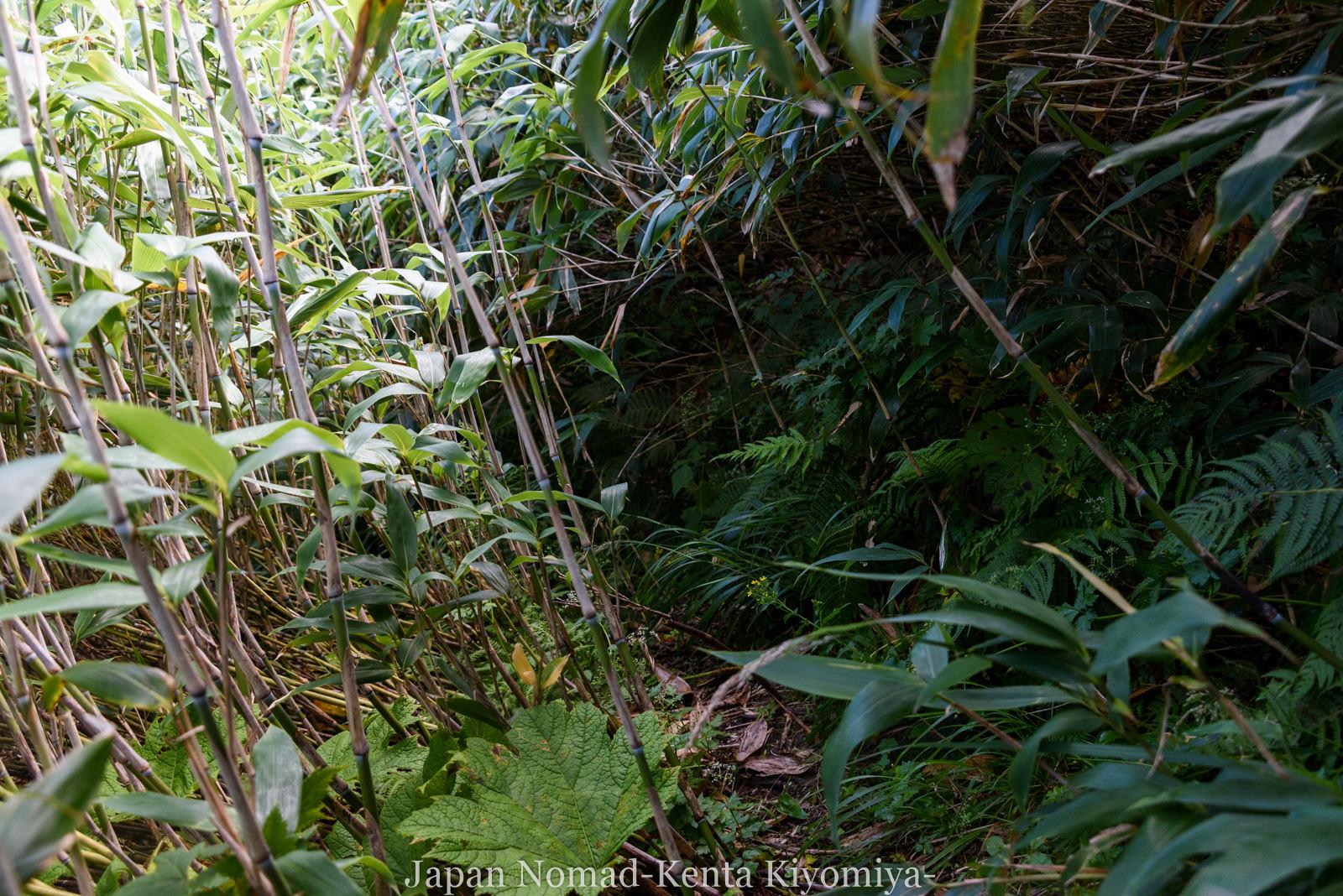自転車日本一周123日目(岩木山)-Japan Nomad (60)
