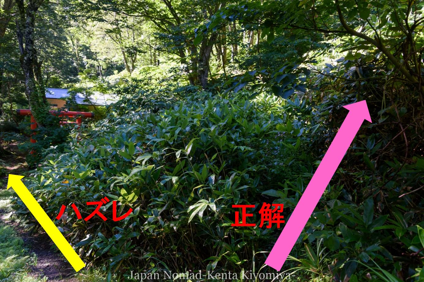 自転車日本一周123日目(岩木山)-Japan Nomad (95)