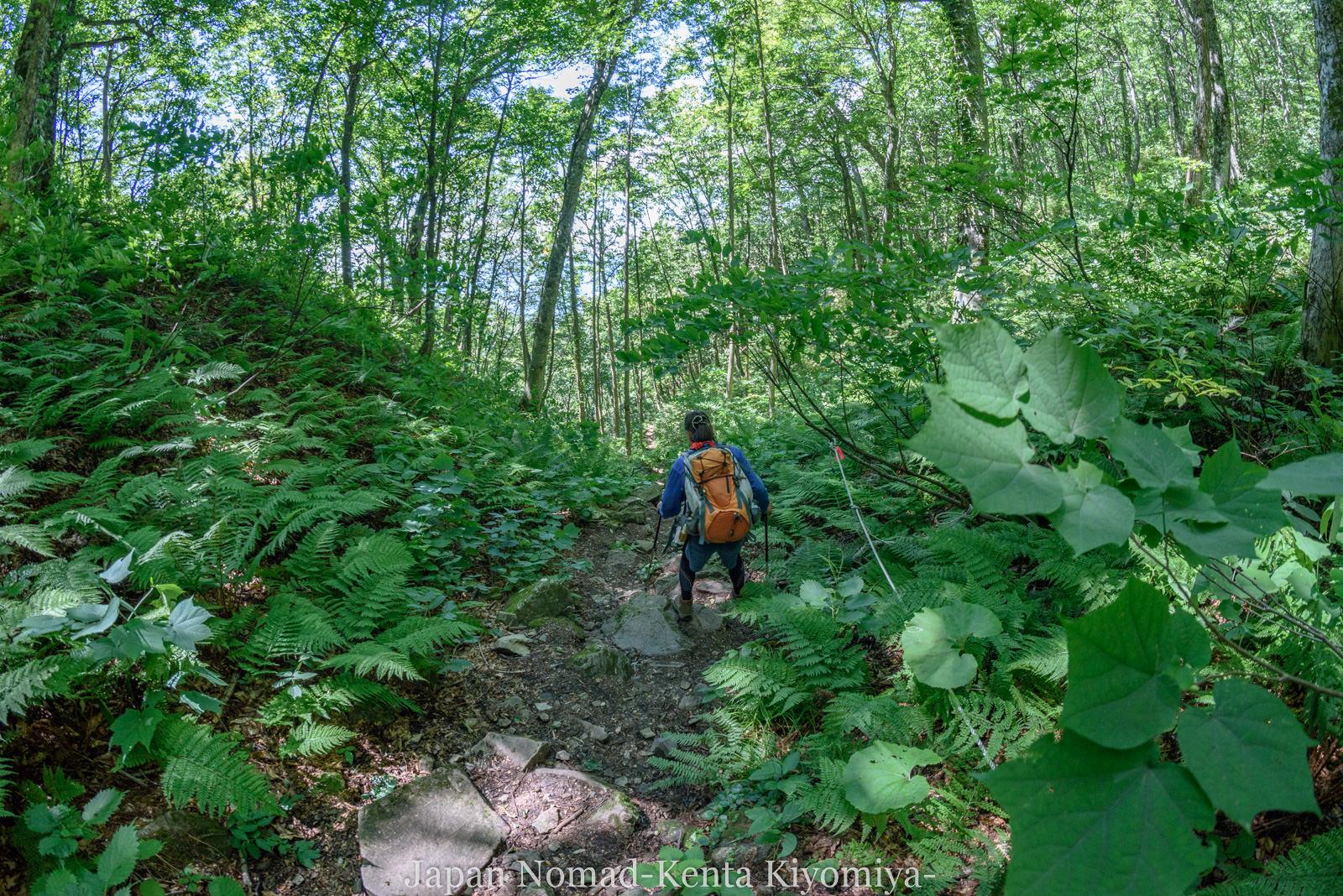 自転車日本一周125日目(白神山地、白神岳)-Japan Nomad (38)