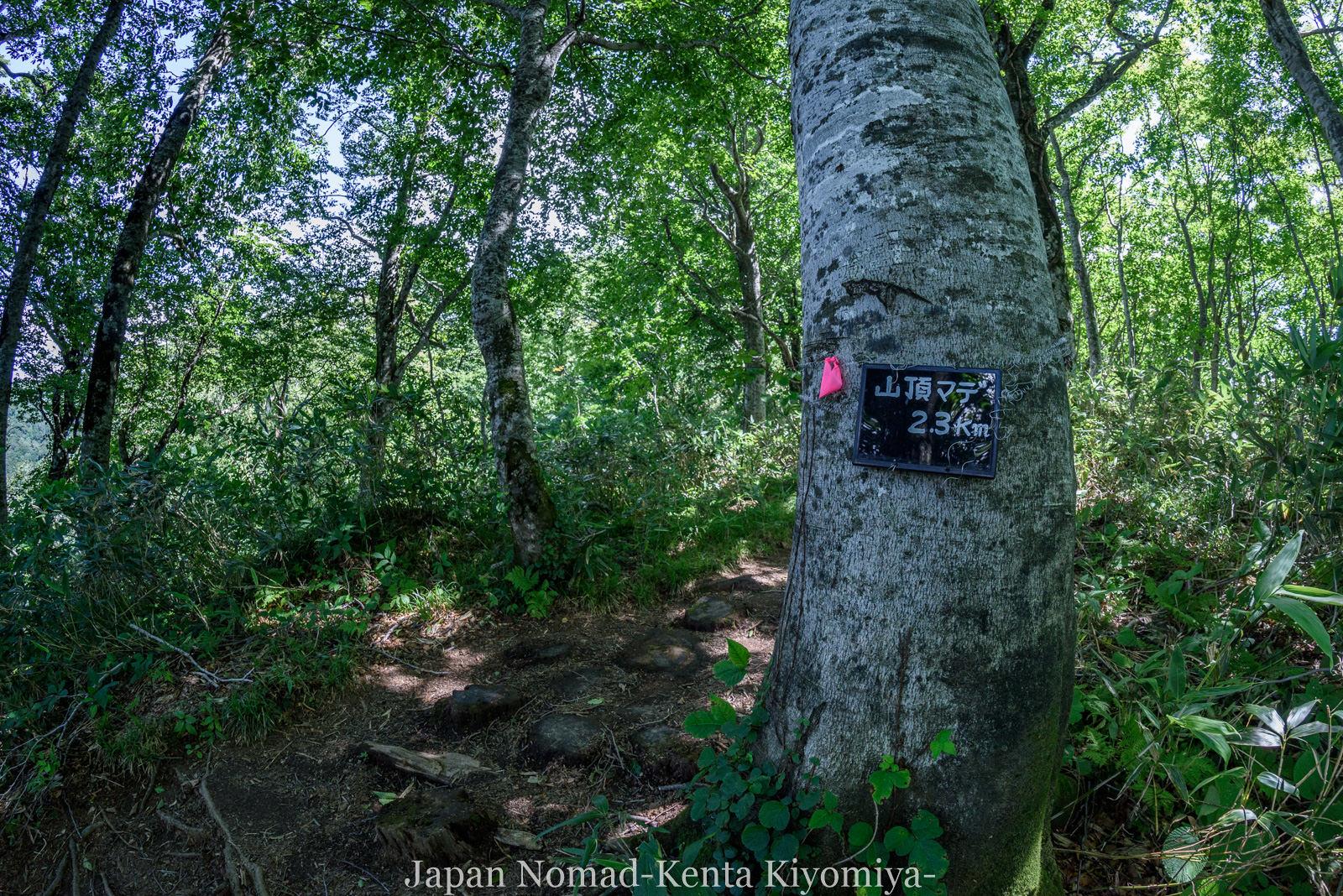 自転車日本一周125日目(白神山地、白神岳)-Japan Nomad (41)