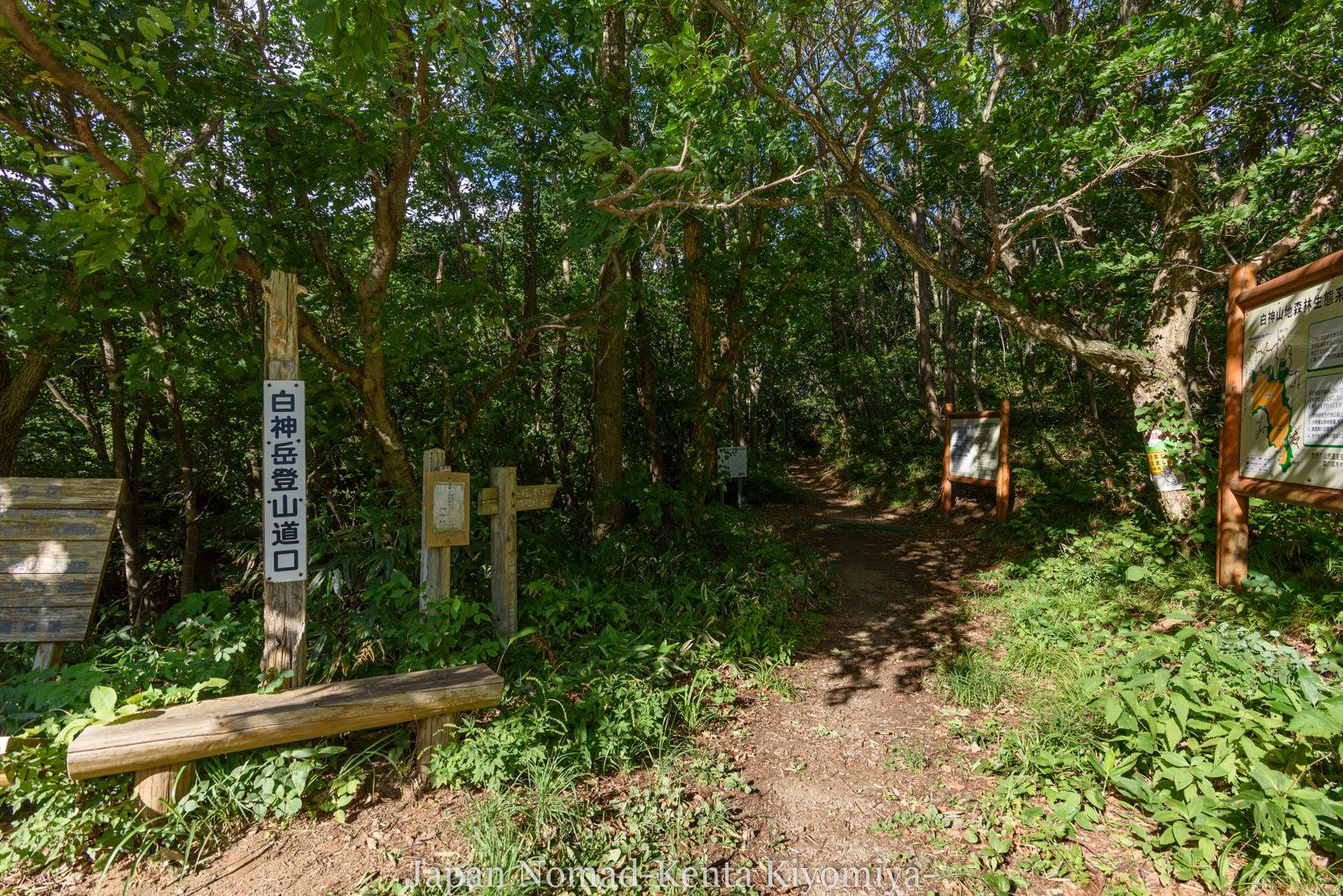 自転車日本一周125日目(白神山地、白神岳)-Japan Nomad (61)