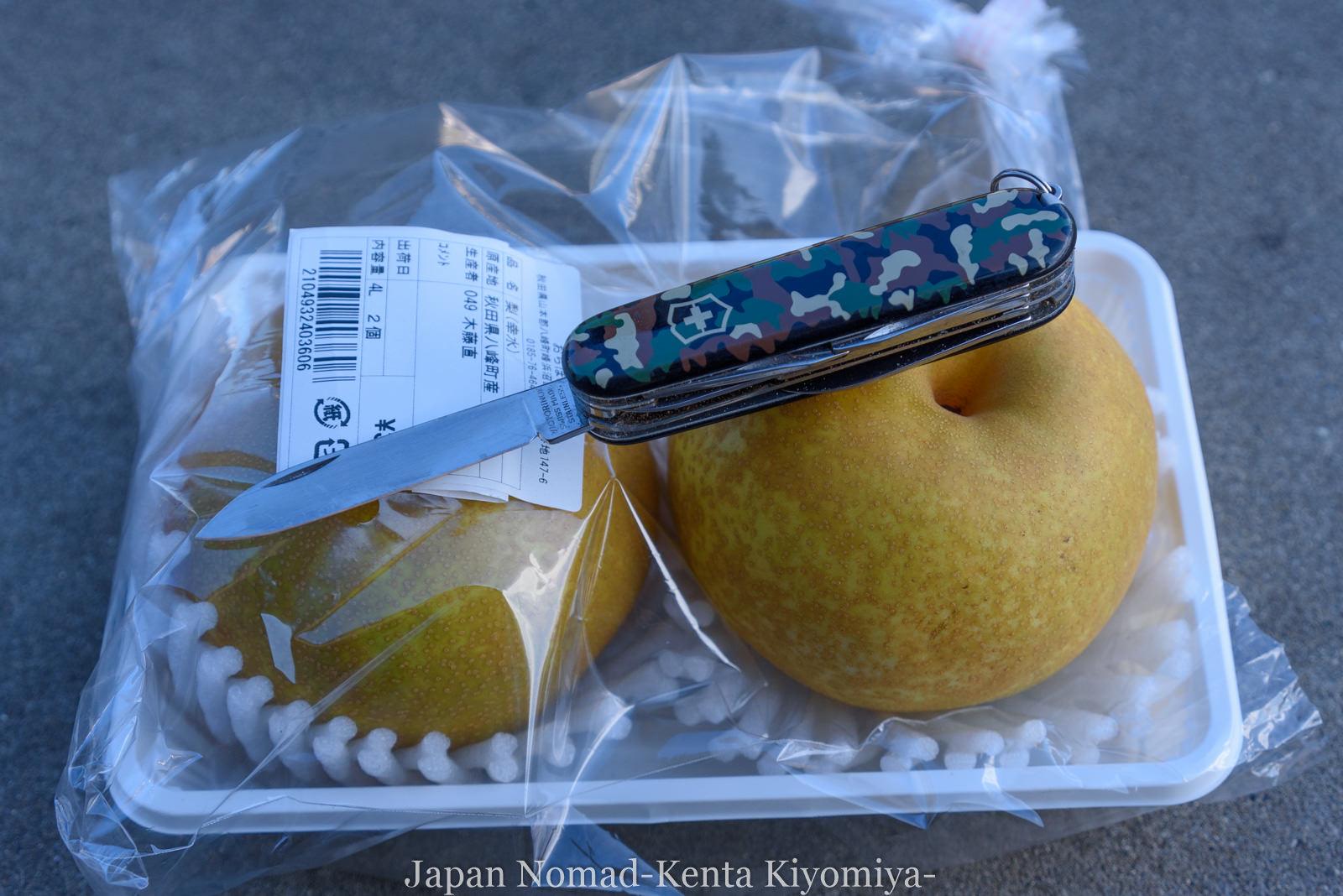 自転車日本一周126日目(台風10合)-Japan Nomad (15)