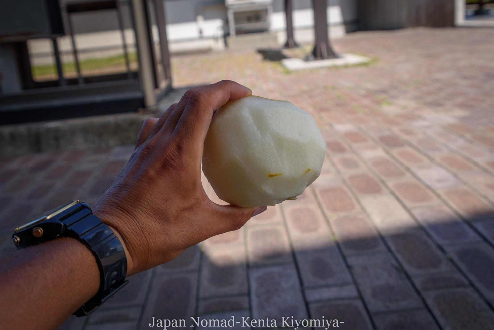 自転車日本一周126日目(台風10合)-Japan Nomad (16)