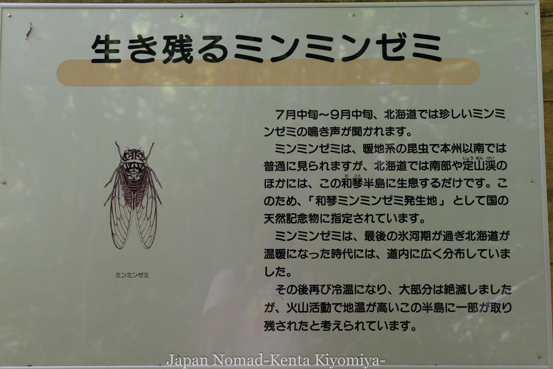 自転車日本一周97日目(コタンの湯)-Japan Nomad (25)
