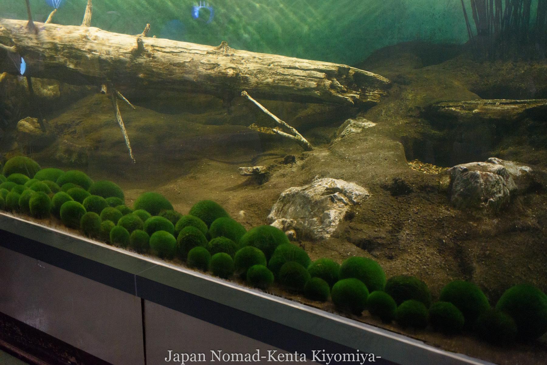 自転車日本一周98日目(阿寒湖、アイヌコタン、まりも)-Japan Nomad (37)