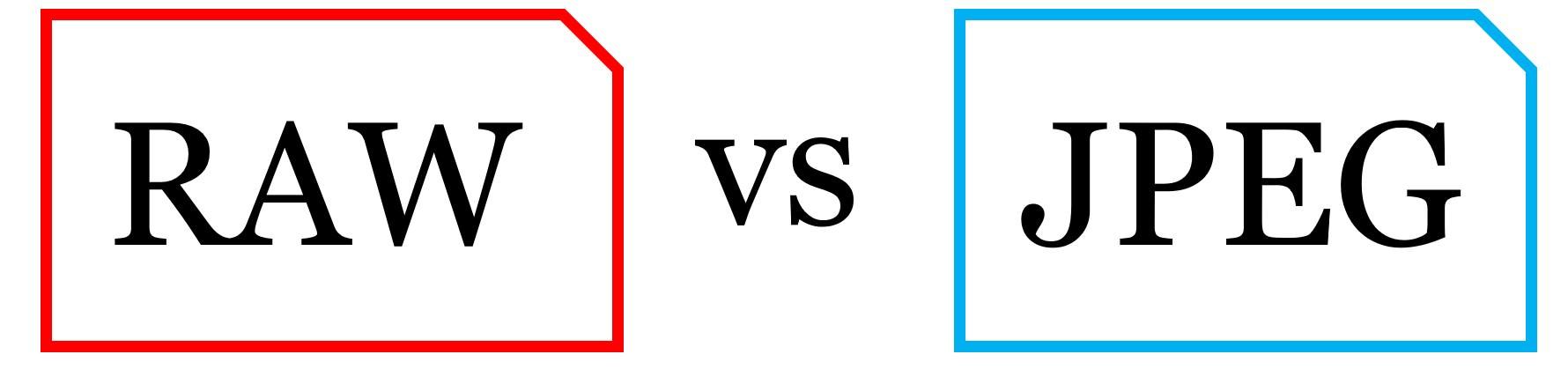 %e4%b8%80%e7%9c%bc%e3%83%ac%e3%83%95%e3%82%92%e8%b2%b7%e3%81%a3%e3%81%9f%e3%82%89%e5%88%9d%e3%82%81%e3%81%ab%e7%9f%a5%e3%81%a3%e3%81%a6%e3%81%8a%e3%81%8d%e3%81%9f%e3%81%847%e3%81%a4%e3%81%ae%e7%9f%a5