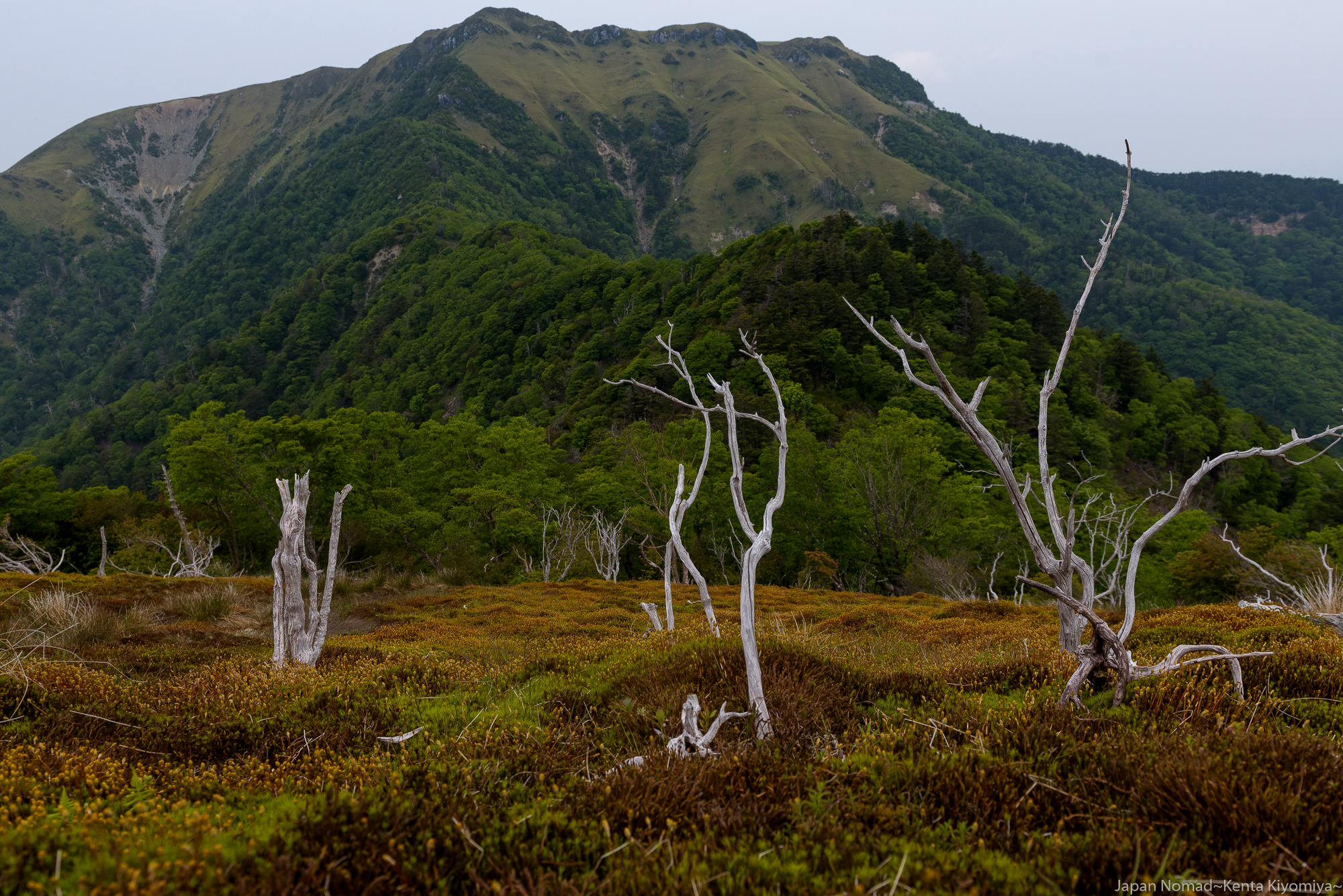 【三嶺~剣山 縦走登山】天の川、夕焼け、雲海など絶景が凝縮された山歩き